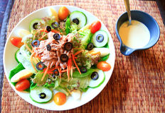 Nicoise salad with caesar cream sauce Royalty Free Stock Photo