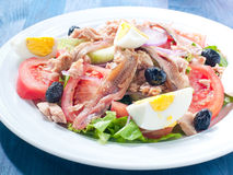 Nicoise salad with egg , anchovies , onions , lettuce Royalty Free Stock Image
