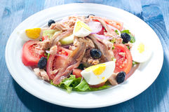 Nicoise salad with egg , anchovies , onions , lettuce Royalty Free Stock Photography
