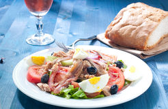 Nicoise salad with egg , anchovies , onions , lettuce Royalty Free Stock Photos