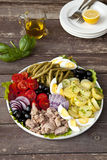 Nicoise salad Royalty Free Stock Photos