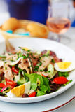 Nicoise Salad Royalty Free Stock Image