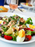 Nicoise Salad royalty free stock photography