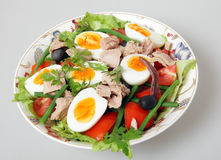 Nicoise salad serving bowl Royalty Free Stock Image
