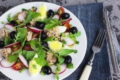 Nicoise salad with tuna, egg, cherry tomatoes and black olives. On grey dark background. French cuisine Royalty Free Stock Photography