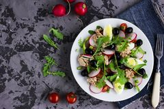 Nicoise salad with tuna, egg, cherry tomatoes and black olives. On grey dark barckground. French cuisine. Top view, copy space Stock Image
