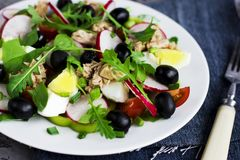 Nicoise salad with tuna, egg, cherry tomatoes and black olives. On grey dark background. French cuisine Royalty Free Stock Photo