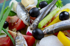 Nicoise-Salat mit Sardellen Stockfoto