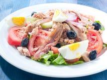 Nicoise sallad med ägget, ansjovisar, lökar, grönsallat Royaltyfri Bild