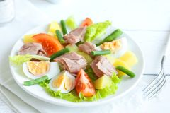Nicoise Tuna Salad royalty free stock photography