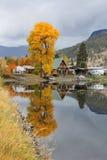 Nicola Lake BC Cabin Reflections vertical Stock Image