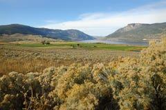 Nicola Lake och dal, British Columbia Royaltyfri Bild