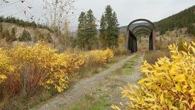 Nicola River Kettle Valley Rail Bridge British Columbia. An abandoned rail bridge over the Nicola River. The Kettle Valley Railway used to cross this trestle stock footage
