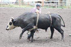 Nicola Tal-Rodeo Lizenzfreies Stockbild