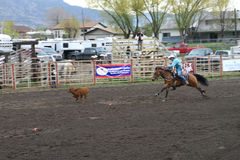 Nicola Valley Rodeo Stock Images