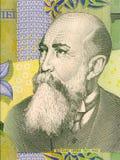 Nicolae Iorga Royalty Free Stock Image