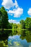 Nicolae Romanescu Park Stock Afbeelding
