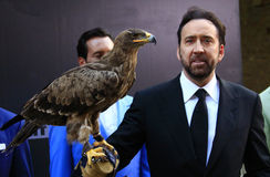 Nicolas Cage Royalty Free Stock Photography