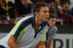Nicolas Mahut (FRA) Zdjęcie Stock