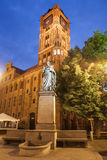 Nicolaus Copernicus Monument and Town Hall in Torun Stock Photos
