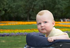 Nicolay in carriage. Small child sitting in a children's carriage on a background of a glade with flowers Stock Photo