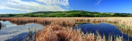 Nicolle Flats Marsh en parque provincial de la libra del búfalo cerca del mandíbula de los alces, Saskatchewan fotografía de archivo libre de regalías