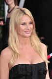 Nicollette Sheridan Stock Photo