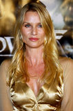 Nicollette Sheridan Royalty Free Stock Photography