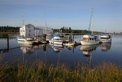 Nicomekl River Marina Morning Stock Images