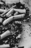 Nicotine Cigarette Butts Stock Photos