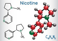 Nicotine molecule, is alkaloid , found in the nightshade family royalty free illustration