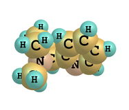 Nicotine molecule isolated on white Royalty Free Stock Photography