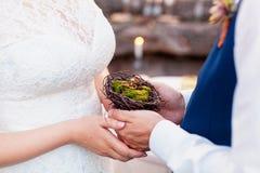 Nid accrochant de jeunes mariés avec des anneaux Paires d'anneaux de mariage s'étendant dans la décoration de mariage de nid Photos stock