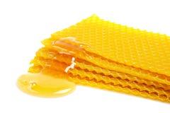 Nid d'abeilles avec du miel Images stock