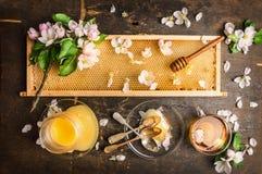 Nid d'abeilles avec le plongeur en bois et la fleur fraîche, le pot avec du miel et le plat avec des cuillères de vintage Photographie stock libre de droits