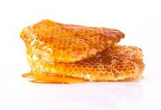 Nid d'abeilles, d'isolement sur le fond blanc Images stock