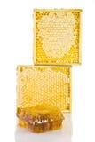 Nid d'abeilles dans la trame en bois Image stock