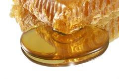 Nid d'abeilles dans le regroupement du miel Photo libre de droits