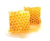 Nid d'abeilles doux d'isolement sur le fond blanc Photographie stock libre de droits