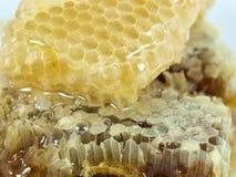 Nid d'abeilles et miel Photographie stock