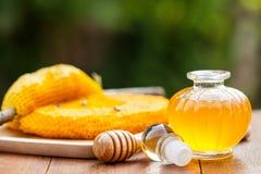 Nid d'abeilles et miel Image stock