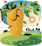 Nid d'abeilles i pendant d'une branche illustration stock