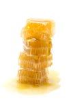 Nid d'abeilles sur le fond blanc Photographie stock