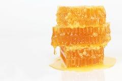 Nid d'abeilles sur le fond blanc Image libre de droits
