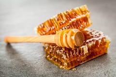 Nid d'abeilles sur le fond gris Photographie stock