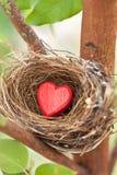 Nid d'amour Image libre de droits