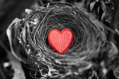 Nid d'amour de coeur Valentine Image libre de droits
