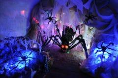 Nid d'araignée Photos libres de droits