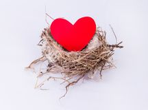 Nid d'oiseau avec le coeur d'isolement sur le fond blanc Elemen de conception Photographie stock libre de droits
