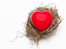 Nid d'oiseau avec le coeur rouge d'amour Photographie stock libre de droits